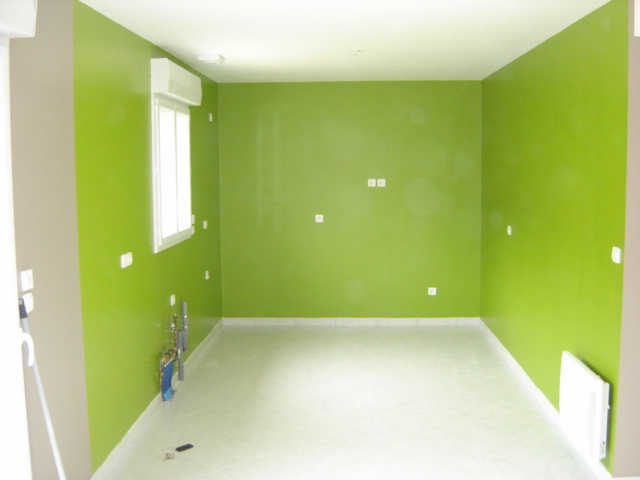 Travaux interieur lsdd for Photo peinture maison interieur
